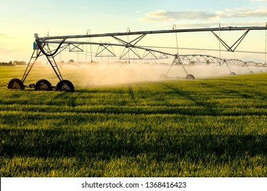 A center pivot sprinkler prepared for a new season watering a wheat field.
