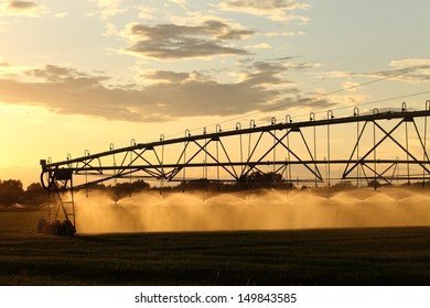 A center pivot used to irrigate an alfalfa field.
