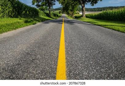 Center of road stripe between cornfields in rural Pennsylvania.