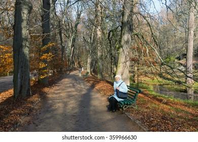 "Central Alley in park ""Sofiyivka"" (National dendrological park of Ukraine).  Uman city, Central Ukraine"