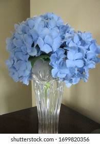 Central NJ/USA - June 20, 2019:  Simple floral arrangement of blue hydrangea blossoms in a vase.