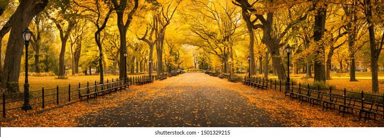 Central Park im Herbst, New York City, USA