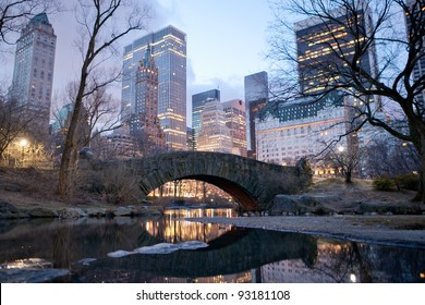 Central Park bridge at dawn in New York.