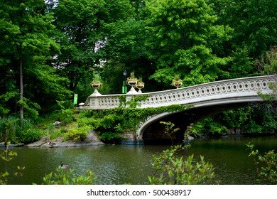 Central park. Bridge and lake.