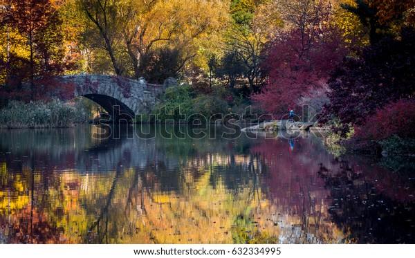 Central park at fall