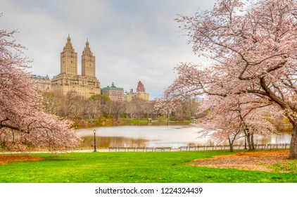 Central Park, Manhattan, New York City in spring