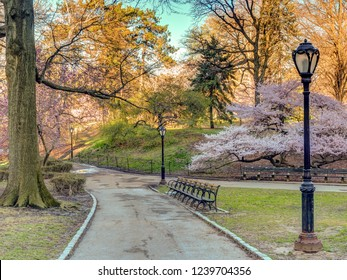 Central Park, Manhattan, New York City in spring