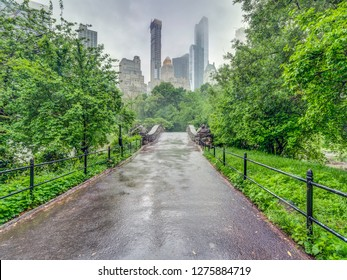 Central Park, Manhattan, New York City in spring on rainy day