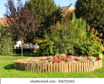 Central Park in Medias, Romania with flowers and trees.