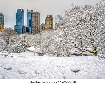 Central Park, New York City after winter snow storm