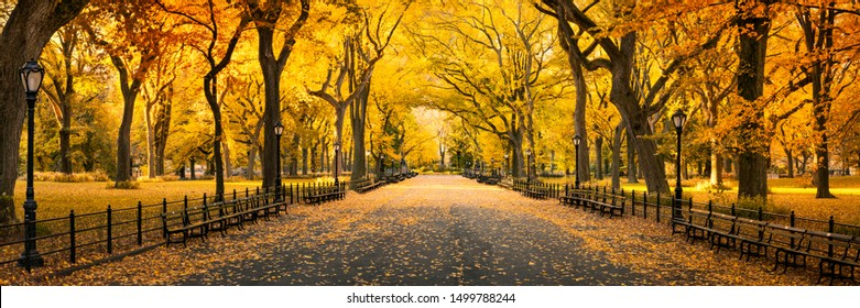 Central Park in New York City during autumn season - Shutterstock ID 1499788244