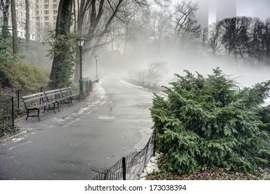 Central Park, New York City on a foggy day