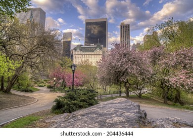 Central Park, New York City in spring at pond