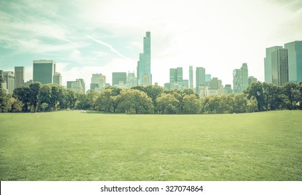 Central park in New york city without people. Central park is the most important park of the city