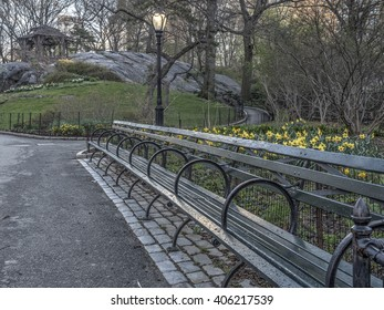 Central Park, New York City in early spring after rain