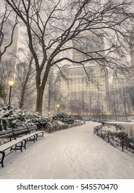 Central Park, New York City during blizzrd in early morning
