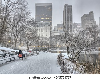 Central Park, New York City during blizzard in early morning