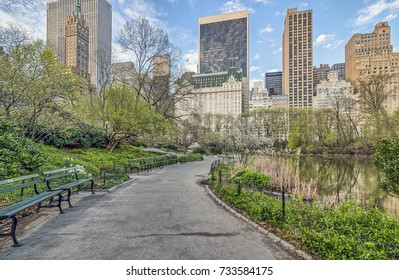 Central Park, New York City in early spring with cherry trees in bloom