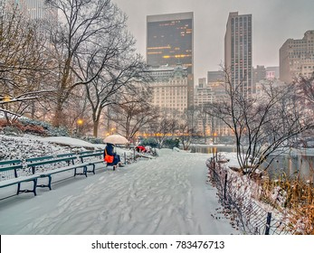 Central Park, New York City during winter snw storm