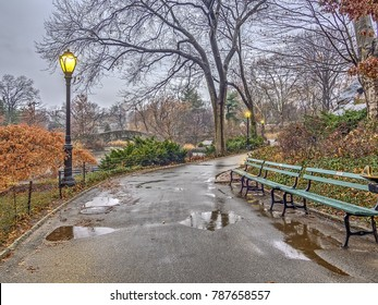 Central Park, New York City in winter after a rain storm