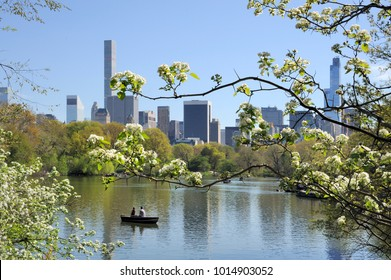 Central Park in New York in summer time. Lake and small rowing boat.
