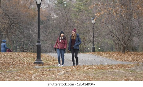 Central Park New York is a wonderful place to relax and extended walks