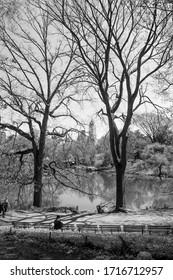 Central Park at spring. Manhattan