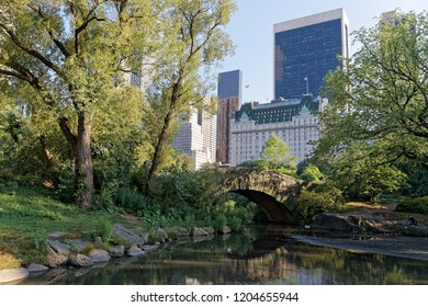 Central Park in summer, New York ,USA
