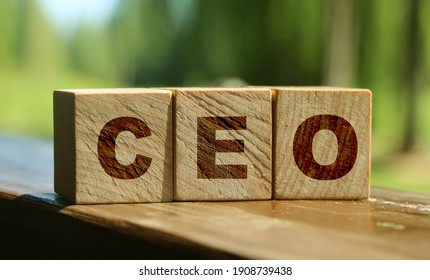 CEO letters on wooden blocks. Chief Executive Officer. Business boss concept. Nature background. Ecological business concept.