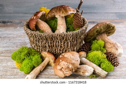 Ceps Boletus in a basket on a wooden rustic background