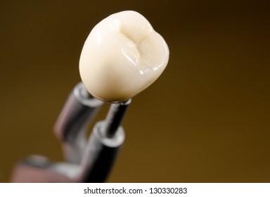ceramic dental crown, tweezers (diagonal)