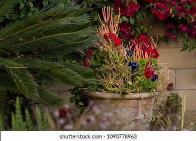 ceramic planter with fire sticks and flowers