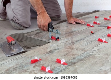 Ceramic Tiles. Tiler placing level in position with lash tile leveling system and clamp level ceramic tiles.