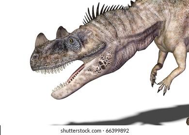 ceratosaurus big head close-up white background