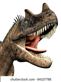 Ceratosaurus dinosaur closeup head, mouth open teeth showing. Predator theropod, large head, short forelimbs, robust hind legs,  long tail. Jurassic Period. Isolated illustration  white background.