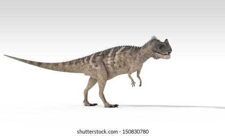 ceratosaurus isolated