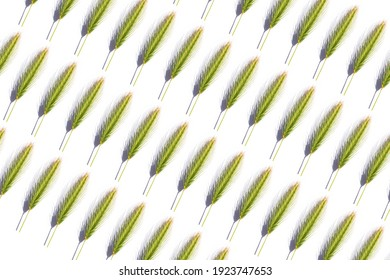 cereal foliage repeated on white background