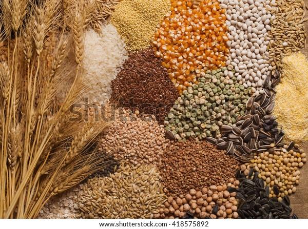 Grains de céréales, graines, haricots