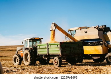 Cereal harvester using tractor and transporting harvest