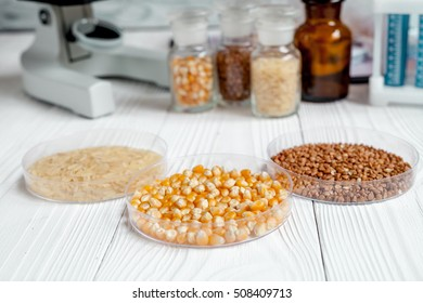 cereals in petri dish for analysis on wooden background