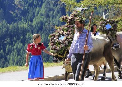 Ceremonial driving down of cattle, Jerzens, Tyrol, Austria, Europe, 10 September 2011