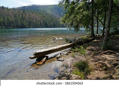 Cerne Jezero Lake is largest natural lake in Sumava National Park, Czech Republic - Shutterstock ID 1861504363
