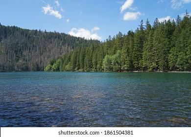 Cerne Jezero Lake, largest natural lake in Sumava National Park, Czech Republic - Shutterstock ID 1861504381