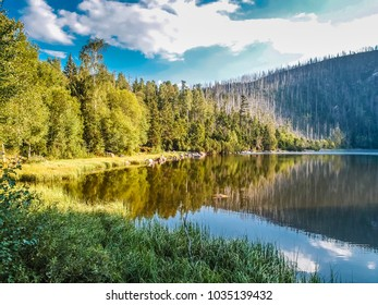 Cerne Jezero - Sumava National Park, Czech Republic, Europe