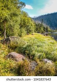 Cerne Jezero - Sumava National Park, Czech Republic, Europe