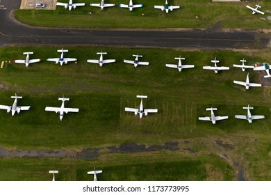 Cessna's lined up in rows at an airport.
