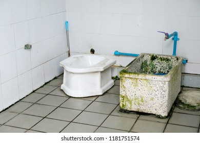 Cesspool Latrine in public toilet.