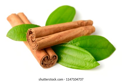 Ceylon cinnamon sticks and fresh cinnamon leaves isolated on white