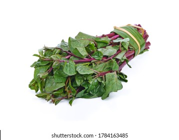 Ceylon spinach or Malabar spinach isolated on white background