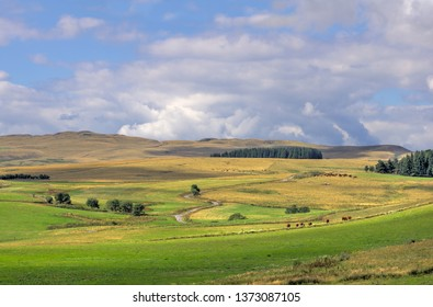 The Cezalier plateau. Wild landscape in the department of Cantal in Auvergne. France